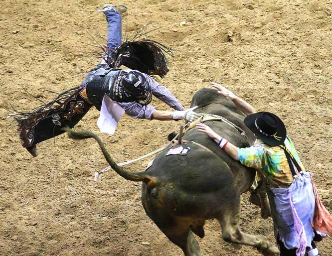 how to start bull riding